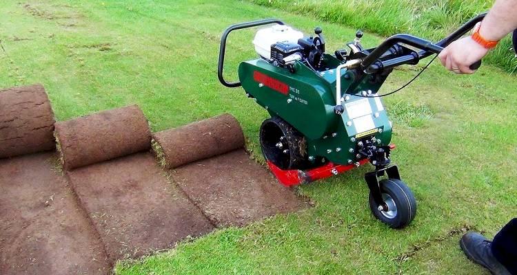 Artificial grass installation cost 9