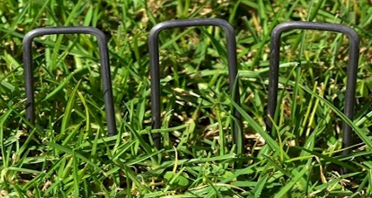 Artificial grass installation cost 5