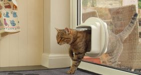 Cost of Fitting Pet Flaps