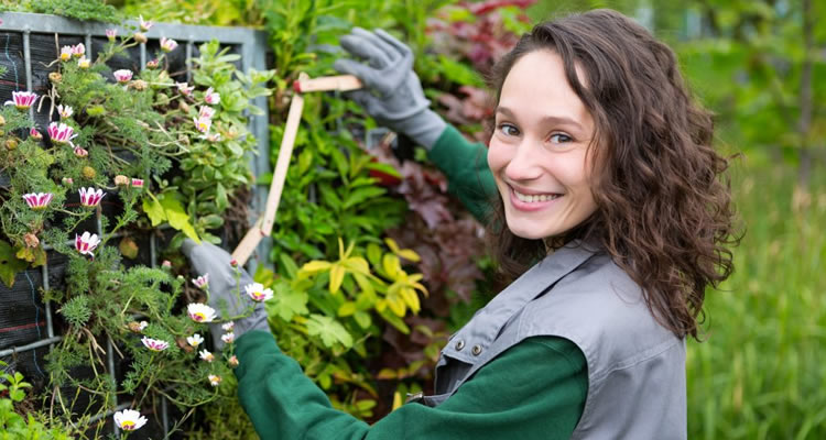 How Much Does a Gardener Cost?