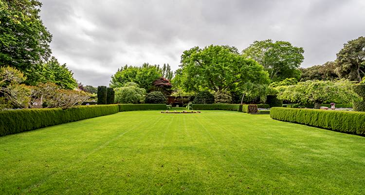 cost of hiring a gardener for maintenance 5 c2m800 - How Much Should A Self Employed Gardener Charge 2019