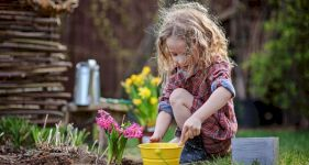 How to Childproof your Garden