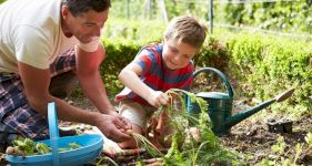 How to Make Your Garden Safe and Fun for Disabled Children