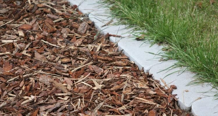 bark mulch patio