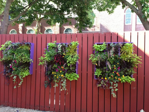 baskets hanging on a fence to help liven up your garden