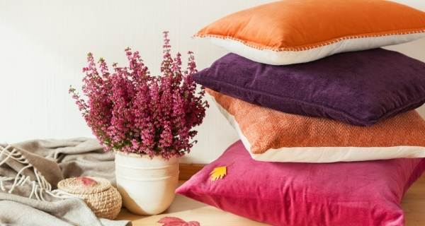 Autumn colour cushions stacked with a pink plant