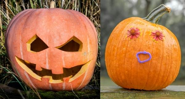 Pumpkins with scary face and funny face