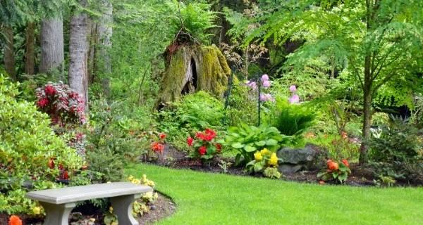 green garden to enjoy