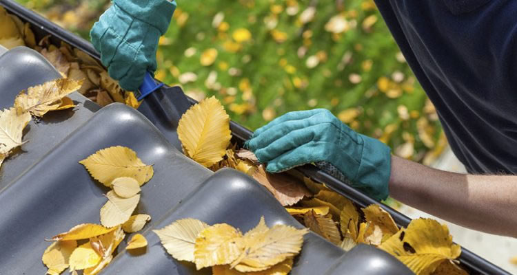 Average Guttering Cleaning Cost